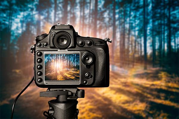 چگونه از محو و تار شدن عکسها جلوگیری کنیم؟