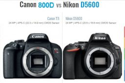 مقایسه دوربین نیکون D5600 و کانن 800D