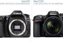 sensor-Canon-EOS-80D-Nikon-D7500-min